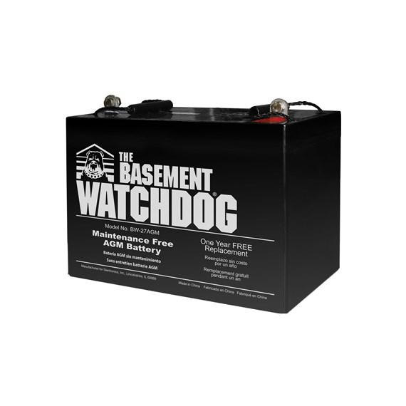 Maintenance Free AGM Battery