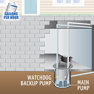 Basement Watchdog Big Dog Connect Backup Sump Pumping Capacity